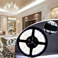 3528 5M 300 600 Leds SMD 12V LED Flexible Strip Light Tape Roll Warm Cool White
