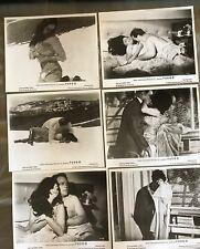 ISABEL SARLI 6  Original Movie Photos FUEGO Argentine Sexploitation Vinage1969
