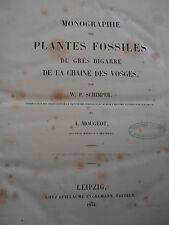 RARE MONOGRAPHIE DES PLANTES FOSSILES DU GRÈS BIGARRE DES VOSGES 1844 EO (ref34)