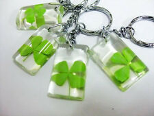 Wholesale lots 20pcs Real green Four Leaf Clover Magic Lucky Keychains