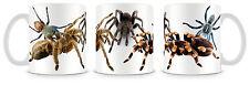 Tarantula Mug  Spiders Arachnid v2