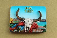China Tibet Namtso Reiseandenken 3D Polyresin Kühlschrankmagnet Souvenir Magnet