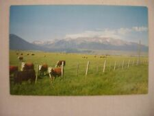 VINTAGE PHOTO POSTCARD OF THE WALLOWA MOUNTAINS IN EASTERN OREGON UNUSED