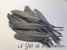 NEW! Bulk 50pcs 10-15cm Silver Grey Goose Feathers DIY Craft Dream Catcher