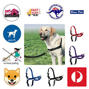 Gentle Leader Dog Harness Easy Walk No Pull Front Clip Blue Red Black Purple