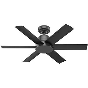 """Hunter Kennicott SureSpeed Indoor/Outdoor 44"""" Ceiling Fan, Matte Black"""