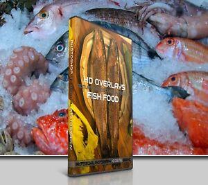 200 SEA FISH FOOD DIGITAL PHOTOSHOP OVERLAYS BACKDROPS BACKGROUNDS PHOTOGRAPHY