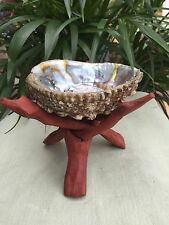 Rainbow Abalone Shell With Tripod Wood Stand Smudging Decor Jewelry Display.