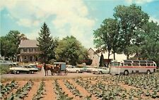 Amish Farm and House Lancaster Pa old cars bus Tobacco Crop Postcard