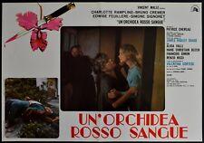 fotobusta UN'ORCHIDEA ROSSO SANGUE CHARLOTTE RAMPLING BRUNO CREMER   HORROR