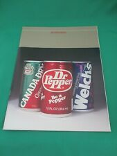 DR PEPPER COMPANY ANNUAL REPORT FOR 1981