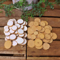 White Natural Birch Bark Mini Round Log Slice Home Craft Wedding Christmas 20/40