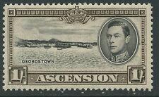 Ascension Island SG44 1938 1s. black & sepia P13.5