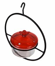 Trenton Gifts Glass Hummingbird Feeder with Cherry Glass Lid