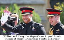 Prince Harry And Prince William Postcard On Day Of Royal Wedding To Meghan