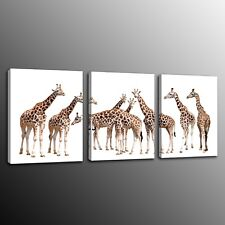 Canvas Prints Painting Giraffe Family Wall Art Home Decor Picture 3pcs