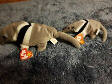 Ty Beanie Baby - Ants the Anteater, Retired 1997 w/tags & Matching Teenie Beanie