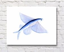 Flying Fish Watercolor Painting Flying Fish Art Print
