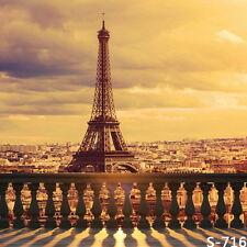 5x7ft Vinyl France Romantic Sunset Paris Eiffel Tower Backdrop Background