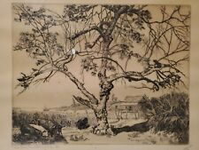 """Walter R. Locke etching """"The Old Mulberry Tree"""" (Florida) dated 1938 signed"""