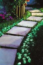 Lot 1000 Solar Green Glow in the Dark Pebbles Rocks Walkways Decor Driveways
