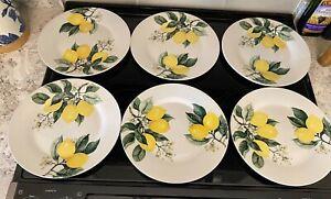 "Royal Norfolk Set of 6 LEMON 10.5 "" Dinner Plates NWT"