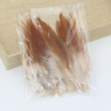 50pcs Rooster Tail Little Feathers DIY Art Crafts Scrapbooking Card Making Decor
