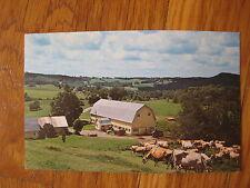 vintage Twin Maple Farm Walden Vermont POSTCARD photo VT Cabot farm landscape