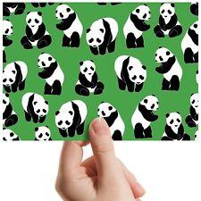 """Panda Pattern China Bear - Small Photograph 6"""" x 4"""" Art Print Photo Gift #14564"""