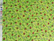 Country Gardens Kids Kari Pearson quilt sew fabric 21453 H