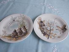 Zeitgenössische Sammel- & Zierteller aus Porzellan mit Vogel-Motiv