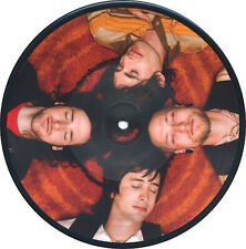 """All American Rejects PICTURE vinyl 7"""" Gives You Hell b/w On The Floor-Demo PROMO"""
