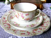 M Z Altrohlau Bridal Rose Teacup Trio, Tea Cup & Saucer & Luncheon Plate c1920s