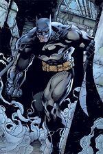 Poster BATMAN - DC Comic - Prowl - The Dark Knight ca60x90cm  NEU 58667