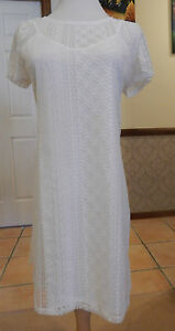 Socialite - Stretch Lace Dress or Long Top - BNWT - Size AU 10-14 - Ivory