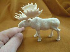 (moose-15) white Moose Elk bull of shed ANTLER figurine Bali detailed carving