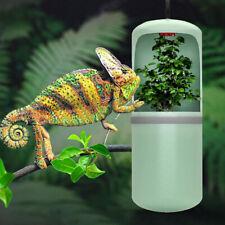 Reptile Drinking Water Fountain Lizard Chameleon Dispenser Terrarium Habitat #Us