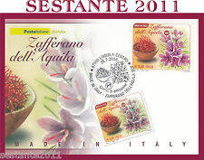 ITALIA MAXIMUM MAXI CARD 2008 MADE IN ITALY ZAFFERANO DELL'AQUILA DOP A167