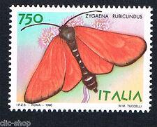 ITALIA 1 FRANCOBOLLO ANIMALI FARFALLE ZYGAENA RUBICUNDUS 1996 nuovo**