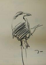 Jose Trujillo Original Charcoal on Paper Sketch Drawing 18X24 Bird Finch New Art