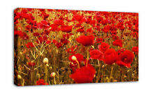 Red Poppies Floral Canvas Wall Art Print Picture 37x23""