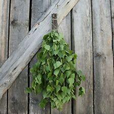 More details for dried hand made sauna whisk / sauna vihta - birch