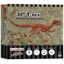 "SkullDuggery Cast & Paint 3D Tyrannosaurus Rex 30"" Diorama Fossil Project"