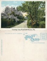 GREETINGS FROM WATERVILLE PA ANTIQUE POSTCARD