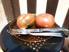 15 graines semences de Tomate   MARMANDE ROUGE  méthode bio Tomato Seeds