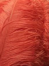 A Dozen Coral/Peach Ostrich Feathers 18-20 inches 12 Pieces (Ga, Usa)