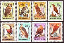 HUNGARY - 1962. AIR Birds of Prey - MNH