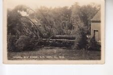Putnam Real Photo Postcard Uprooted Tree from Tornado West Rindge  NH