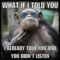 What If I Told You I Already Told You And You Didn't Listen Silly Monkey Funny