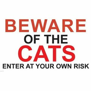 """Metal Sign -"""" BEWARE OF THE CATS"""" 120mmx200mm"""